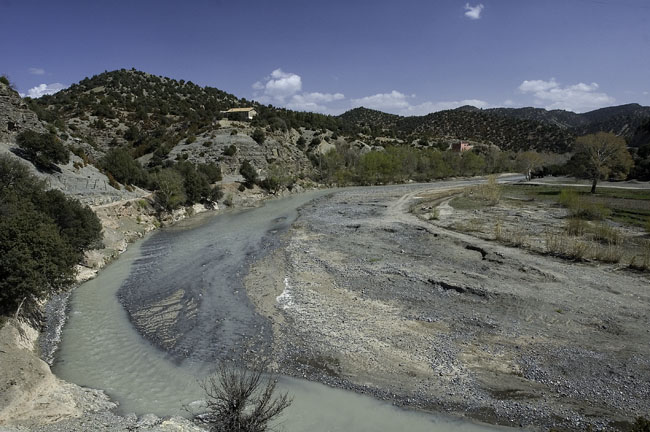 Impact of Ecosystem Destruction
